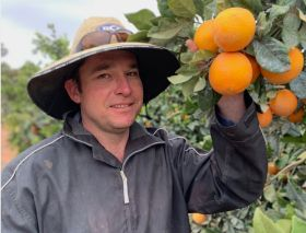 Top taste for Australian citrus