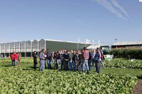 Syngenta to showcase sustainable veg