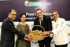 Chilean kiwifruit makes Indian inroads