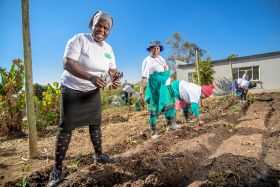 Halls team marks Mandela Day with CSR drive
