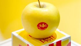 Positive first impressions for new apple Yello