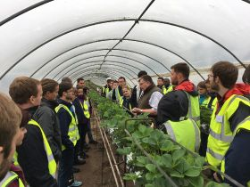 """Help shape new agriculture qualifications"""