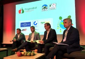 Topfruit volumes forecast to fall