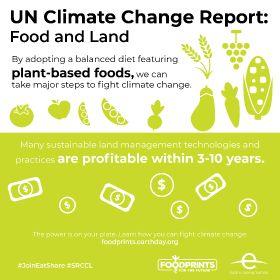 IPCC infographic