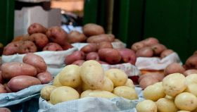Potato wholesaler penalised