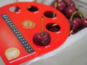 Optimistic outlook for NZ Cherry Corp