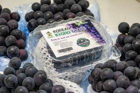 Kyoho grapes arrive in Australia