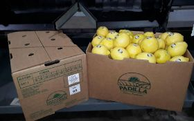 Salix Fruits cements lemon position in US