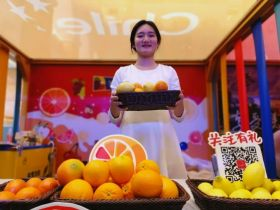 Chilean citrus debuts in China