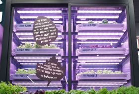 M&S launch in-store vertical farm
