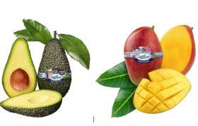 SanLucar boosts tropicals line-up