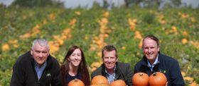 Asda unveils NI-grown pumpkins