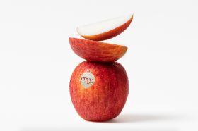 Optimism over Envy crop
