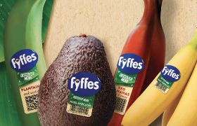 Fyffes prepares to launch exotics range