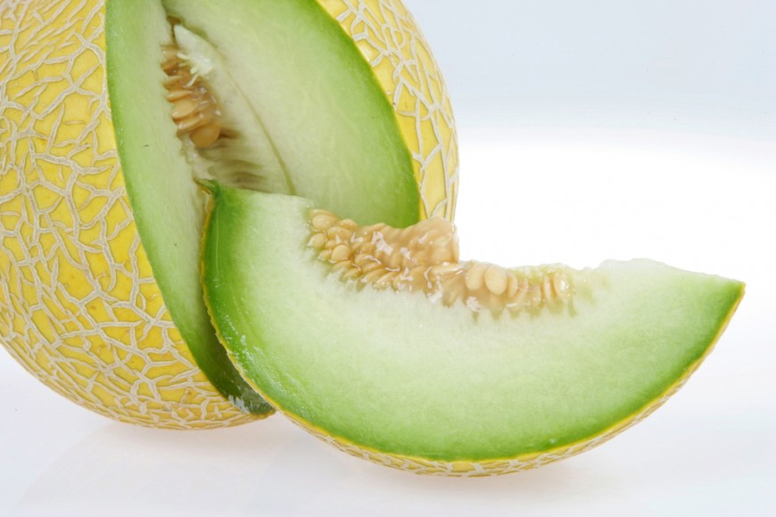 Australia S Attempt To Grow The King Of Fruit See what cantaloupe.tv (cantaloupetv) has discovered on pinterest, the world's biggest collection of ideas. fruitnet com
