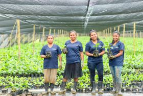 Chiquita's female empowerment efforts