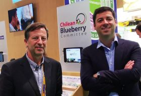 New president for Chilean Blueberry Committee