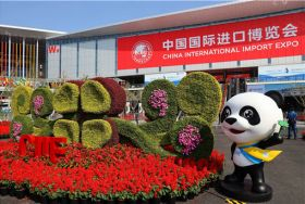 Cold chain key to Chinese import growth