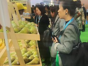 Conference pears aim for Chinese growth