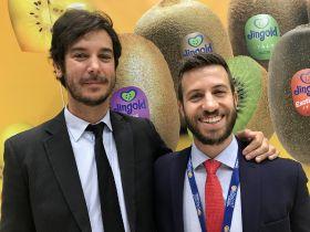 Golden opportunity for kiwifruit down under