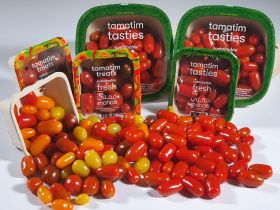 BayWa pleased with tomato project