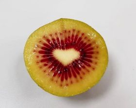 Trucco imports first red kiwifruit from Italy