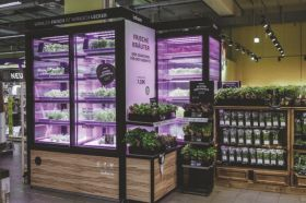 Indoor vertical farms in further M&S stores