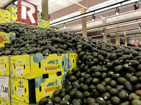 US store builds enormous avo display