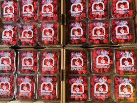Christmas change for BerryWorld