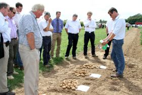 Agronomy heavyweights scoop potato awards