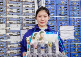 Chilean blueberries on show in Jiaxing