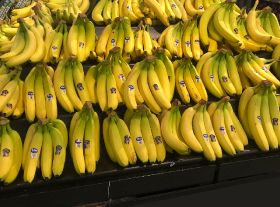 Fyffes ties up with reality show