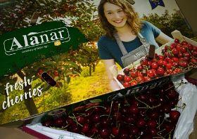 Alanar confident for cherry campaign