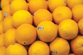 Sunkist excited to supply Vietnam