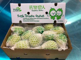 Daikin gets Taiwanese guava to US