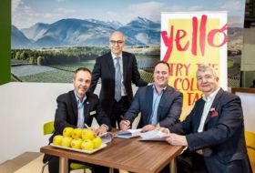Montague brings Yello to Australia