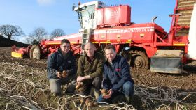 Storm Ciara delays NI growers' potato salvage
