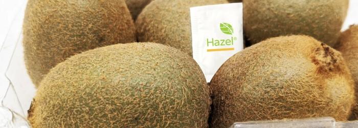 Hazel runs successful kiwifruit trials