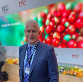 """T&G Global CEO sees """"green shoots"""""""