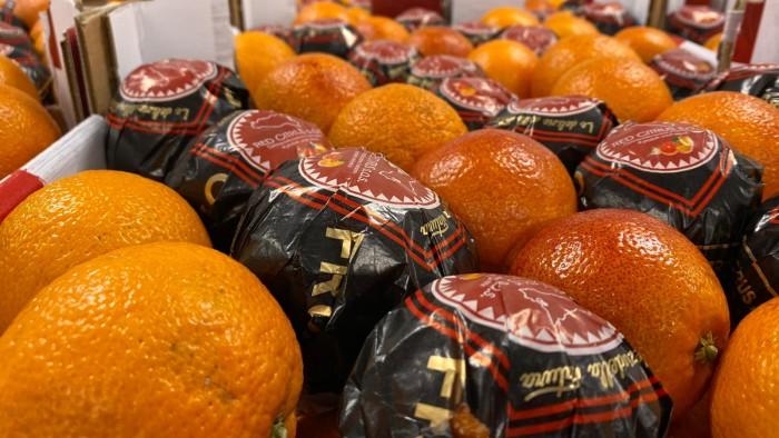 Blood oranges Milan wholesale market
