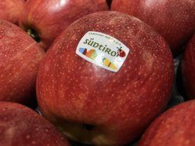 Italian apples facing Indian port shutdown