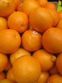 Breakthrough for Chinese citrus exports