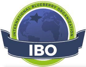 IBO Summit pushed to 2021