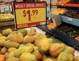 Australian papaya harvest ramps up