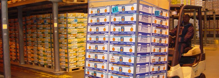 Co-loading success for RSA citrus