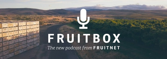 Fruitbox: Vanguard boss sees new trends emerge