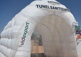 Videxport introduces sanitation tunnels