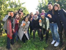 CSO Italy's marketing success