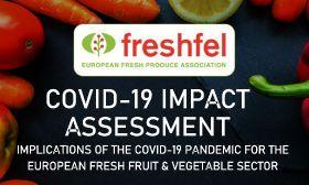 Freshfel studies Covid-19 impact