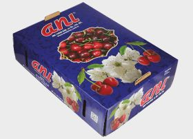 Turkish cherries rise to challenge